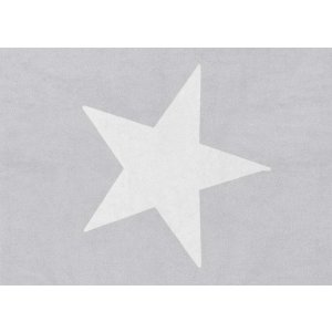 Light grey rug with white star