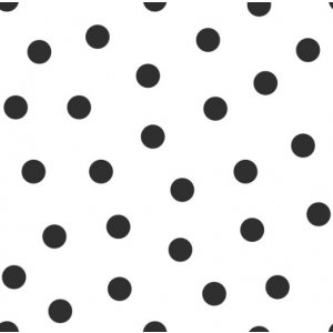 White wallpaper with black polka dots