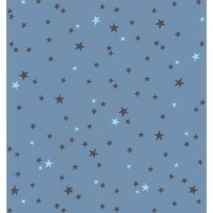 Blue wallpaper with stars Les Petits Curieux